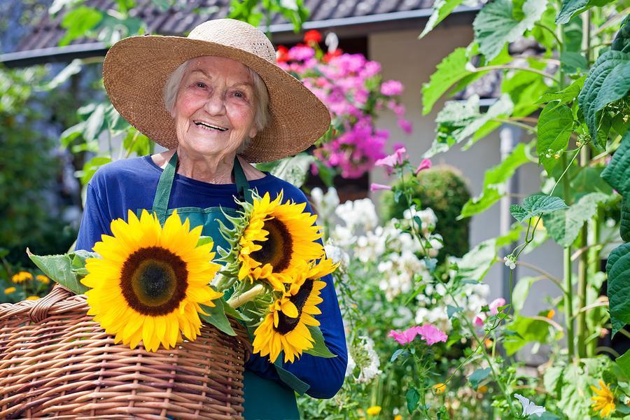 پرستار سالمند آلزایمر