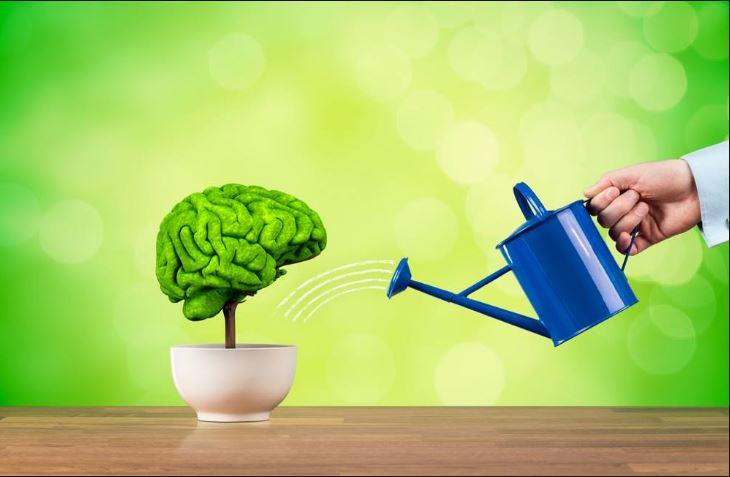 روش داشتن حافظه بهتر