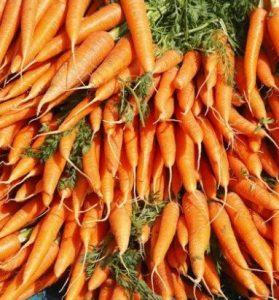 هویج در سبزیجات زمستانی