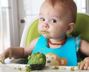 تغذیه کودک با آووکادو